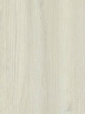 Fissure Oak