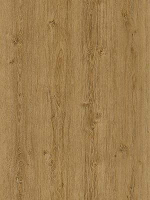 Natural-Oak-Medium-thumb